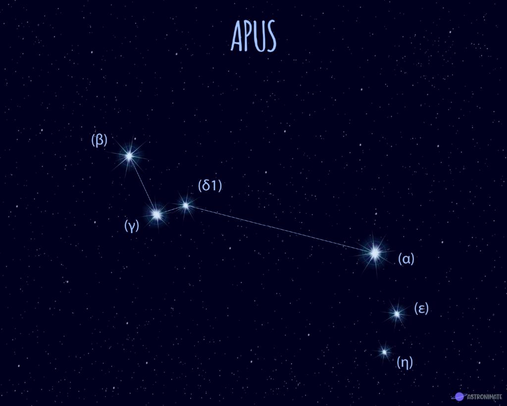 Apus star constellation.