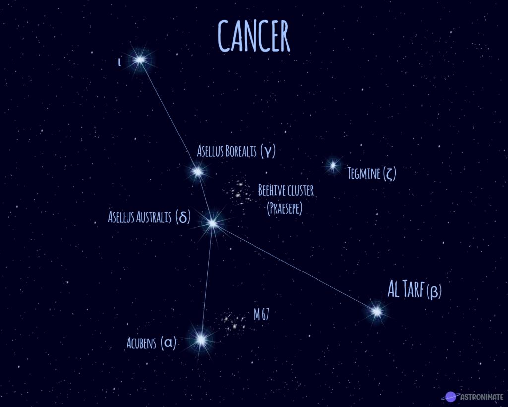 Cancer star constellation.