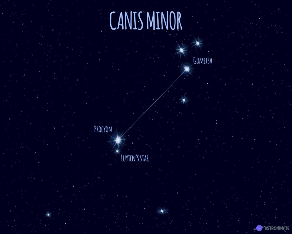 Canis Minor star constellation.