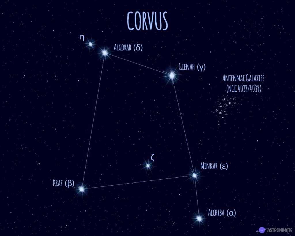 Corvus star constellation.