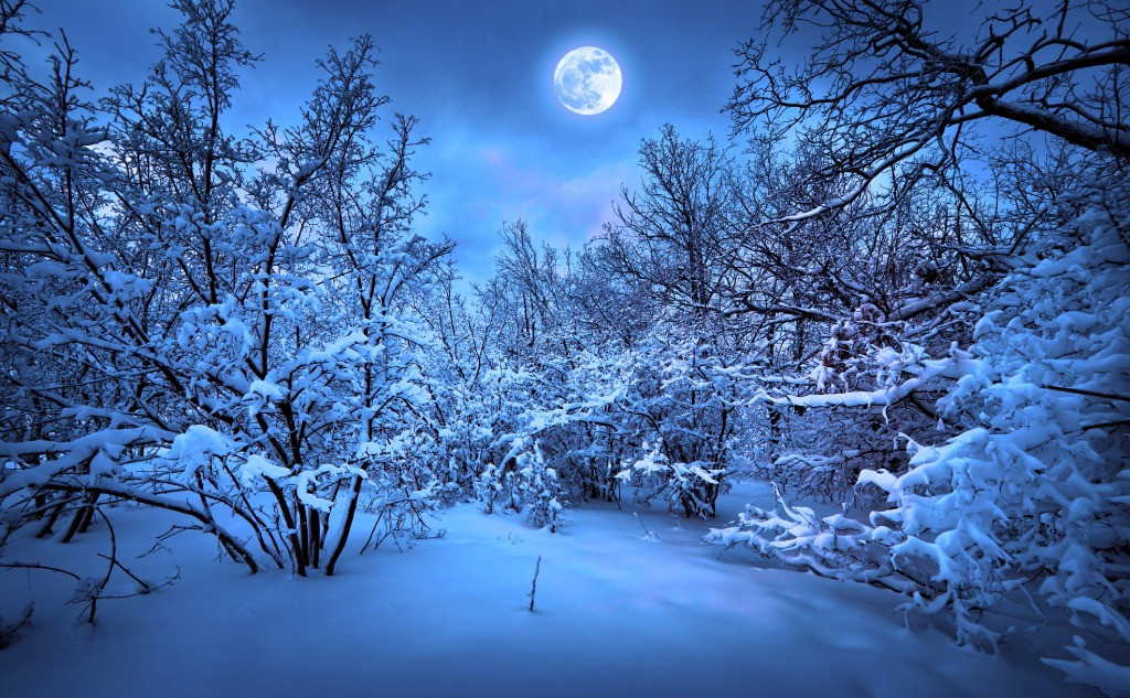December cold moon.