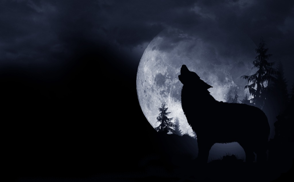 January wolf moon.