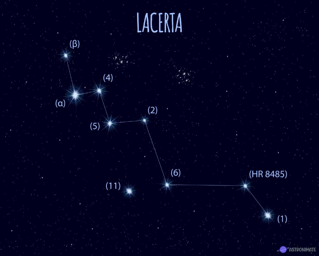 Lacerta star constellation.