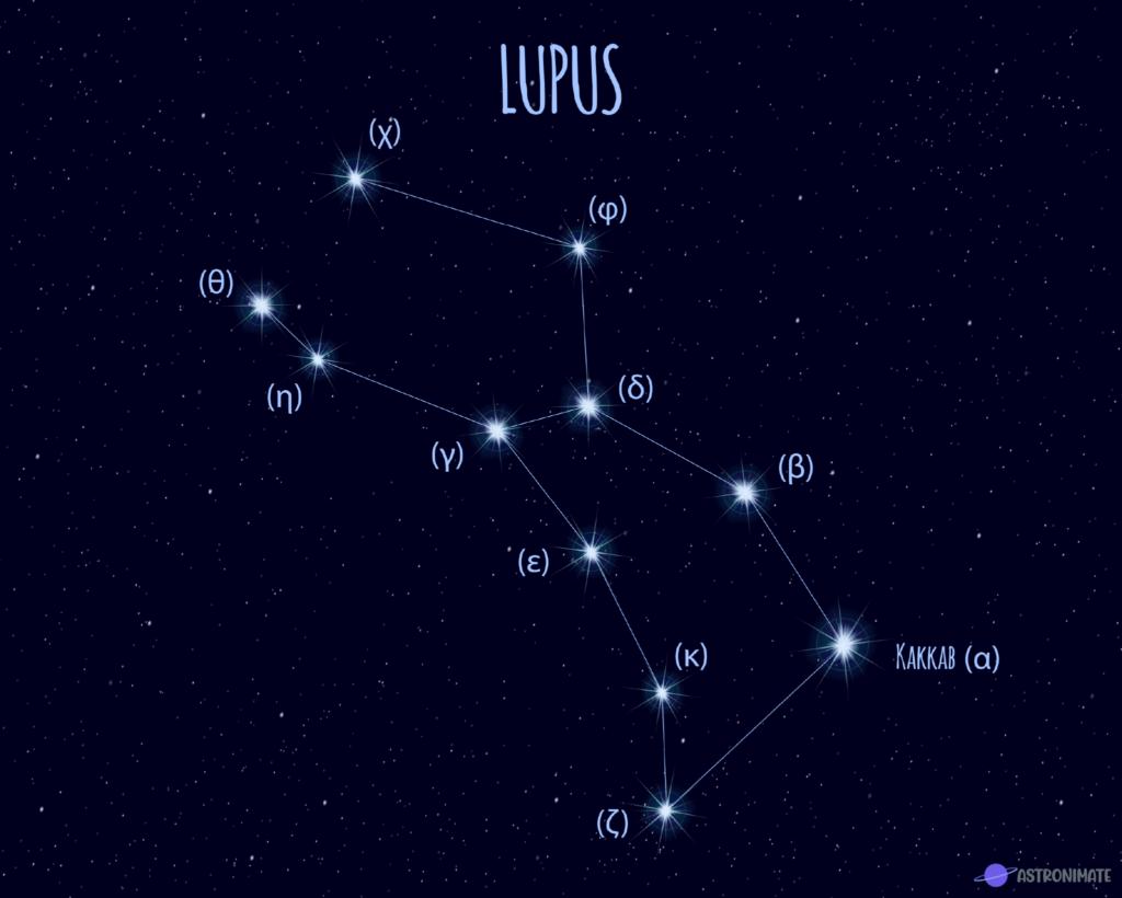 Lupus star constellation.