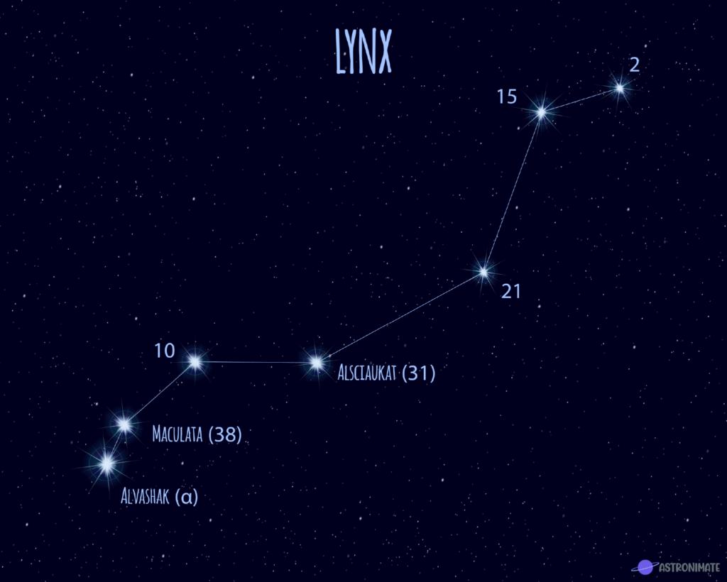 Lynx star constellation.