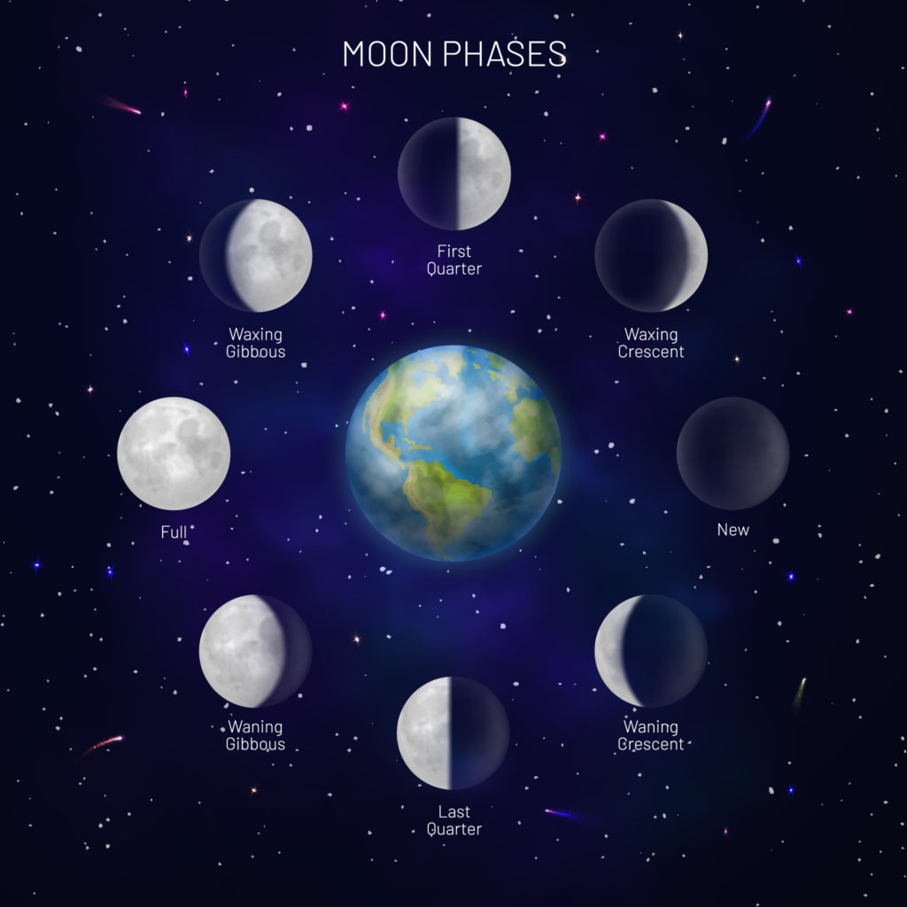 All 8 names of the moon phases.