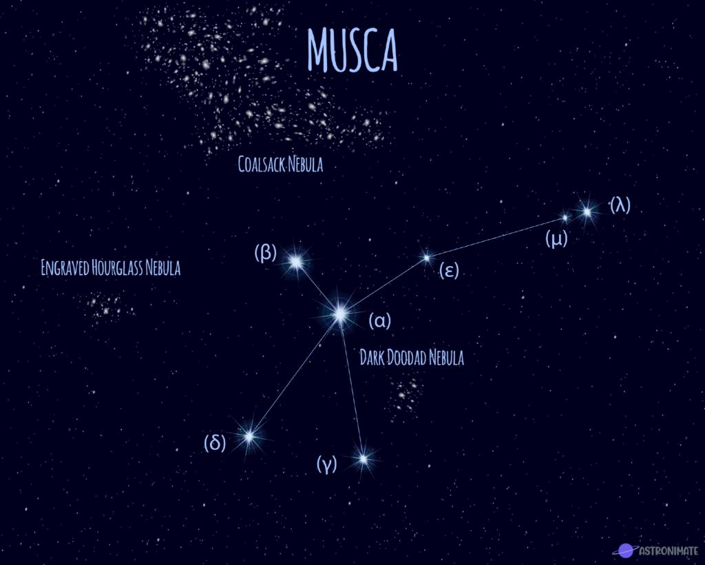 Musca star constellation.