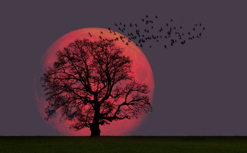 October blood moon.