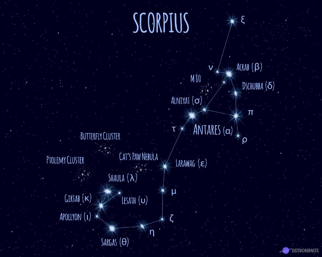 Scorpius star constellation.