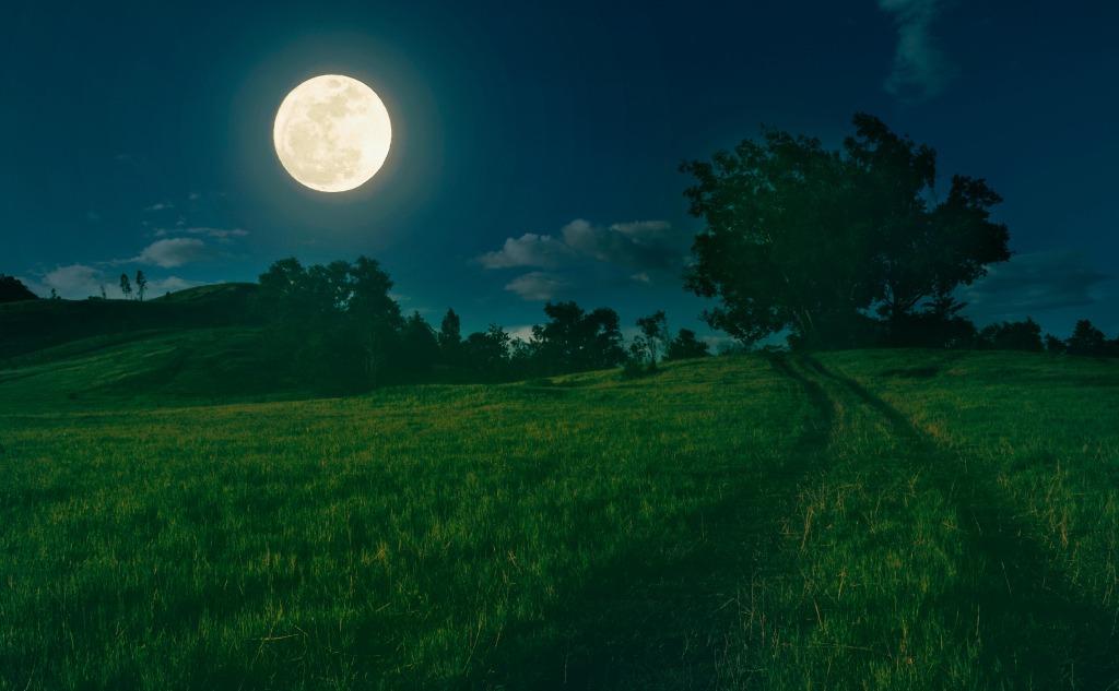 September harvest moon.